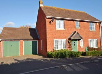 Thumbnail Detached house to rent in Jubilee Gardens, Sidford, Sidmouth