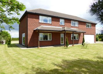 Thumbnail 5 bedroom detached house for sale in Surfleet - Spalding, Lincolnshire