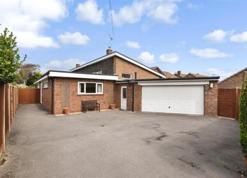 Thumbnail 4 bed detached bungalow for sale in Webb Close, Hayling Island, Hampshire