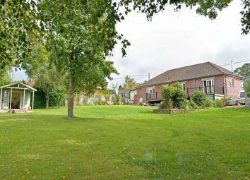 Thumbnail 4 bed detached bungalow for sale in Priestlands, Common Lane, Broad Oak, Sturminster Newton, Dorset