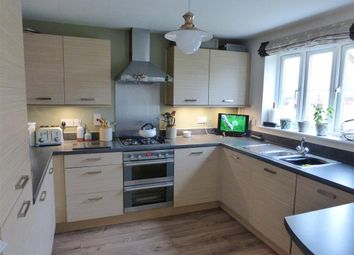 Thumbnail 4 bed property to rent in County Road, Hampton Vale, Peterborough