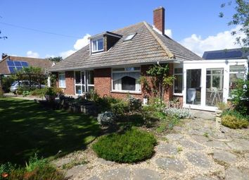 Thumbnail 4 bed bungalow for sale in Bound Lane, Hayling Island