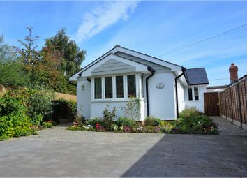 Thumbnail 3 bed detached bungalow for sale in Spring Gardens, Alresford