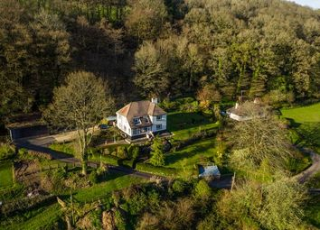 Thumbnail 4 bed detached house for sale in Lower Washfield, Tiverton