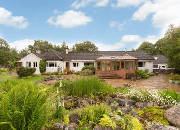 Thumbnail 4 bed detached bungalow for sale in Bowmuir, Libberton, Lanark