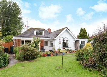 Thumbnail 4 bed detached bungalow for sale in Holt Lane, Holt, Wimborne