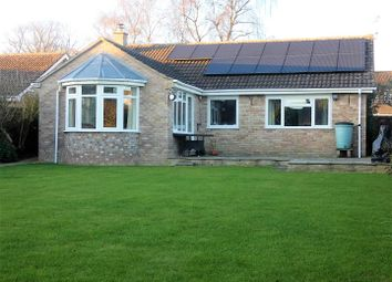 3 bed detached bungalow for sale in Millbrook Close, Child Okeford, Blandford Forum DT11