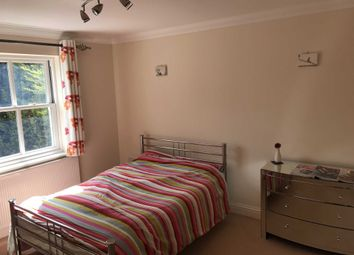 Thumbnail Room to rent in The Leys, Springfield, Chelmsford