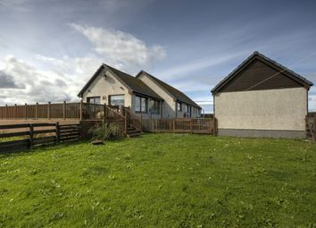 Thumbnail 4 bed detached bungalow for sale in Auckengill, Wick, Caithness.