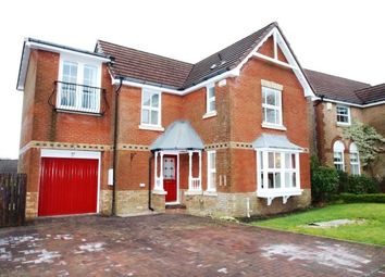 Thumbnail 3 bed property to rent in Baneberry Path, Stewartfield