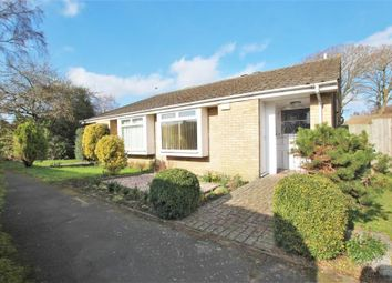 Thumbnail 2 bedroom semi-detached bungalow to rent in Wendron Close, Woking