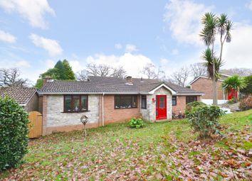 Thumbnail 4 bed detached house for sale in Hollowood Road, Alverstone Garden Village, Sandown