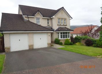 Thumbnail 6 bed detached house to rent in Delph Wynd, Tullibody, Alloa
