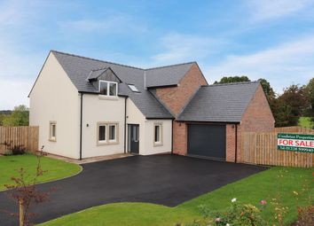 Thumbnail 4 bed detached house for sale in Honeypot Meadows, Cargo, Carlisle