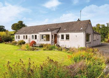 Thumbnail 4 bed detached bungalow for sale in Stairdam Cottage, Murthly, Perthshire
