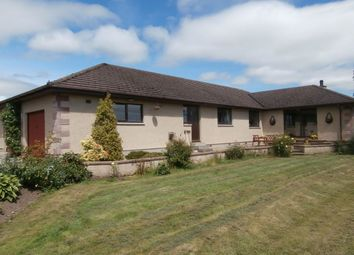 Thumbnail 4 bed bungalow for sale in Fortrose