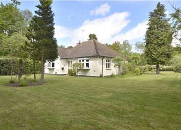 Thumbnail 2 bed detached bungalow for sale in Broadbridge Lane, Smallfield, Horley