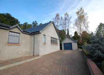 Thumbnail 3 bedroom semi-detached house to rent in 39A St. Ronan's Terrace, Innerleithen