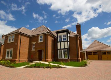 Thumbnail 5 bed detached house for sale in The Willow, Wrestlers Grove, Langford, Beds