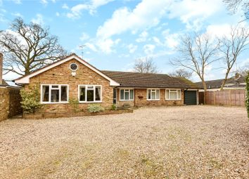 Thumbnail 4 bed detached bungalow for sale in Arbor Lane, Winnersh, Wokingham, Berkshire