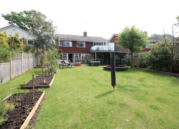 Thumbnail 3 bed detached house for sale in Maple Walk, Bexhill-On-Sea