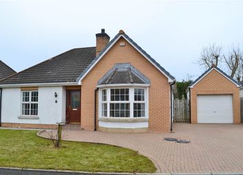 Thumbnail 3 bed terraced bungalow for sale in 56, Knockantern Grove, Coleraine
