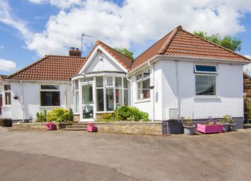 Thumbnail 4 bed detached bungalow for sale in Castle Road, Studley