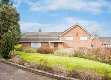 Thumbnail 5 bed detached house for sale in Tyrell Close, Buckingham