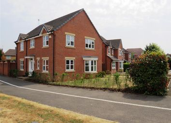 Thumbnail 4 bed detached house to rent in Starflower Way, Mickleover, Derby