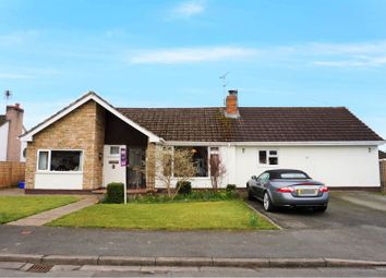Thumbnail 4 bed detached bungalow for sale in Laurels Avenue, Wrexham