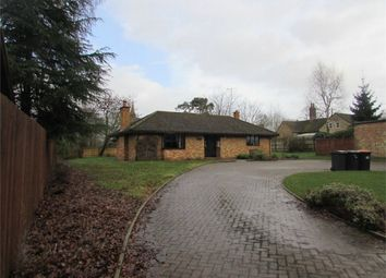 Thumbnail 3 bed detached bungalow to rent in High Street, Upper Dean, Huntingdon