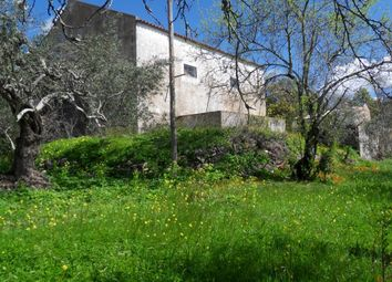 Thumbnail 4 bed country house for sale in Close To São Brás De Alportel, São Brás De Alportel (Parish), São Brás De Alportel, East Algarve, Portugal
