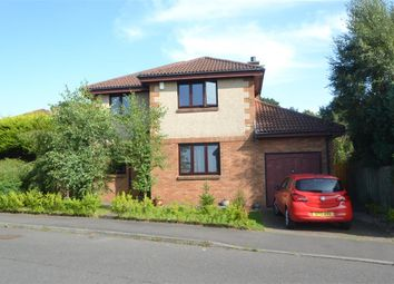 Thumbnail 4 bed detached house for sale in Pleasance Brae, Cairneyhill