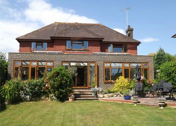 Thumbnail 4 bed detached house to rent in Clavering Walk, Cooden, Bexhill-On-Sea, East Sussex