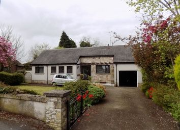 Thumbnail 3 bedroom detached bungalow to rent in 42 Mosside Road, Derriaghy, Lisburn