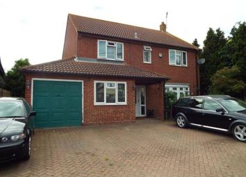 Thumbnail 4 bed detached house for sale in Little Oakley, Harwich, Essex