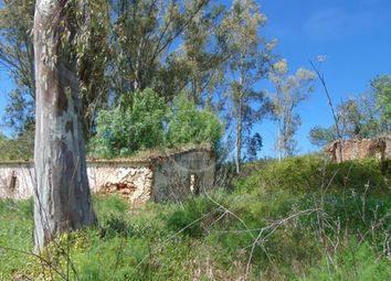 Thumbnail Land for sale in Salir, Algarve, Portugal