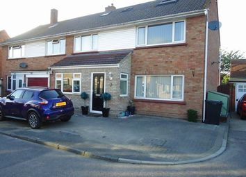 Thumbnail 4 bed semi-detached house to rent in Blenheim Drive, Colchester, Essex