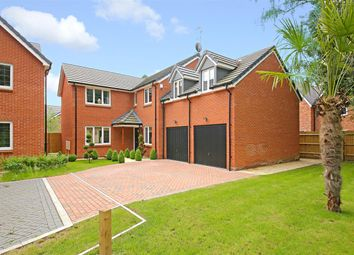Thumbnail Detached house for sale in Rounton Close WD14, Watford