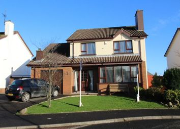 Thumbnail 4 bedroom detached house for sale in Plantation Avenue, Carrickfergus