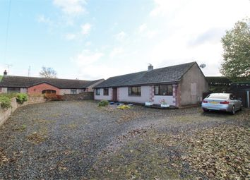 Thumbnail 3 bed detached bungalow for sale in Ashbank, Wandsworth Gardens, Shap, Cumbria