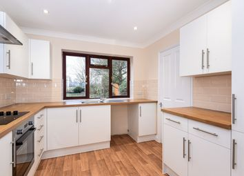 Thumbnail 4 bed detached house to rent in Brooks Green Road, Coolham, Horsham