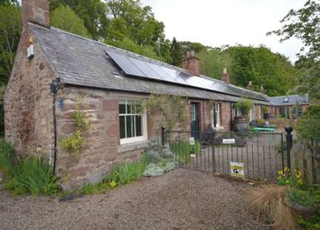 Thumbnail 1 bed cottage to rent in Littleton Farm Cottages, Kirriemuir, Angus