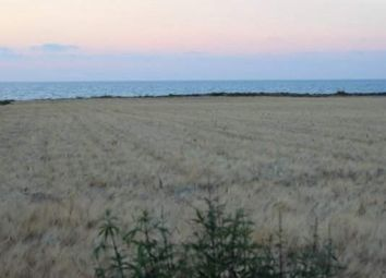 Thumbnail Land for sale in Poli Crysochous, Cyprus