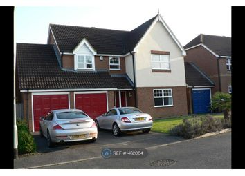 Thumbnail 4 bed detached house to rent in Barker Close, Reading