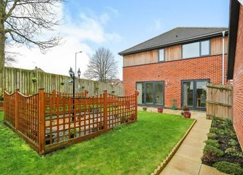 Thumbnail 4 bedroom detached house for sale in Watton, Thetford, Norfolk