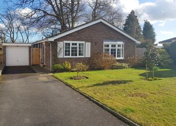3 bed bungalow for sale in Guillards Oak, Midhurst, West Sussex GU29