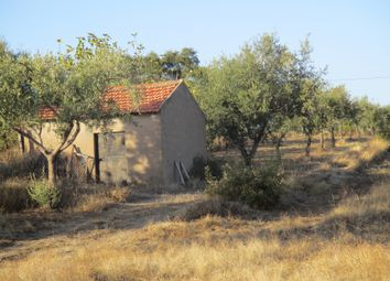 Thumbnail Land for sale in Penamacor (Parish), Penamacor, Castelo Branco, Central Portugal