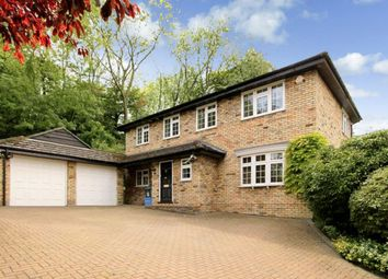 Thumbnail 4 bed detached house to rent in The Chestnuts, Felden, Hemel Hempstead