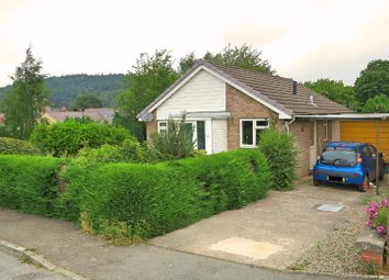 Thumbnail Property for sale in Chestnut View, Kerry, Newtown